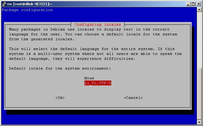 dns323_debian_configure_2